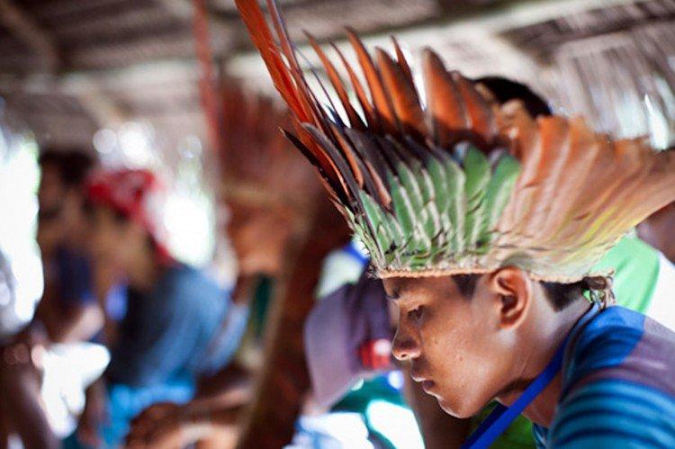 indigenascuca